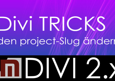 Den Project Slug in Divi anpassen
