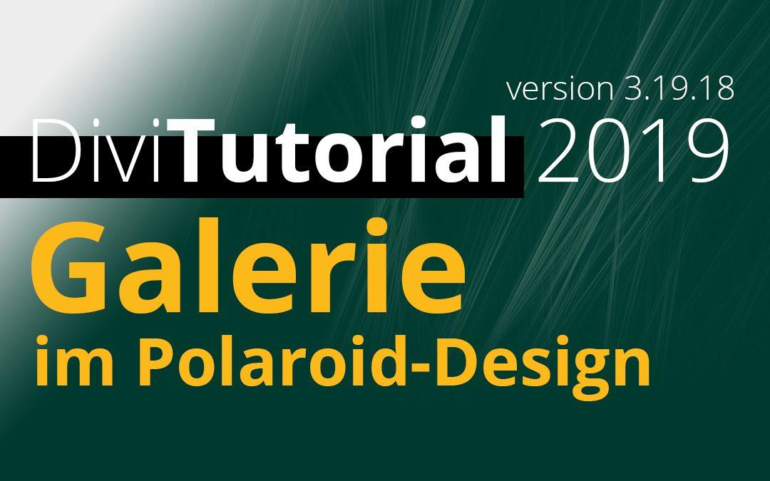 Divi Tutorial – Galerie im Polaroid-Design